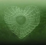 The Gossamer Web of Faith